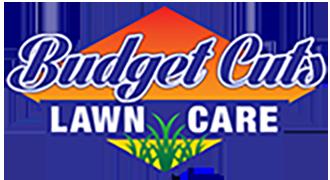 Budget Cuts Logo 2x