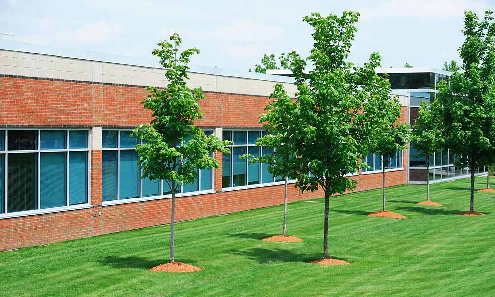 Commercial Landscaping Care